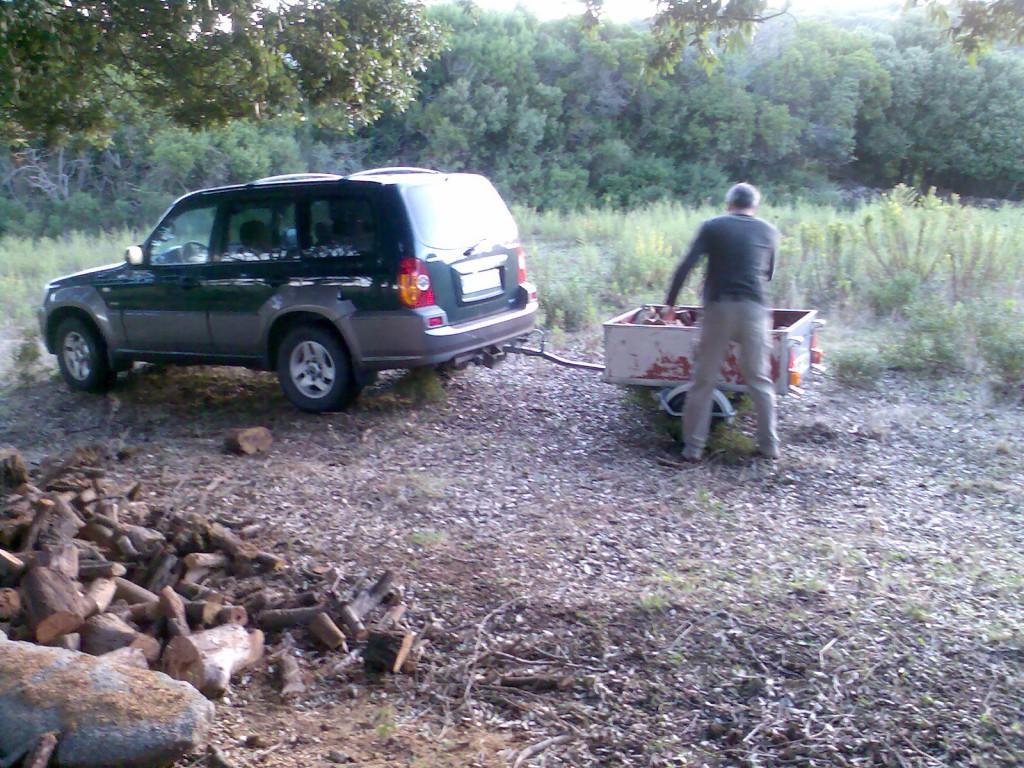 Holz holen im Wald für den gemütlichen Winter Kaminabend.