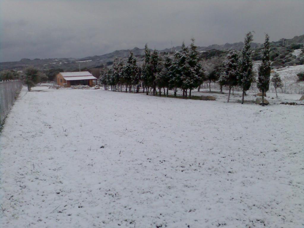 Winterimpressionen. Schnee ist selten.