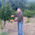 Obst aus eigenem Garten - je nach Saison. Sie sind eingeladen.