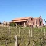 VillaVino - das kleine Ferienhaus für 2-4 Personen.